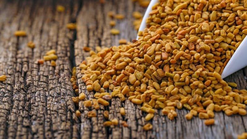 Natural Remedies - Fenugreek Seeds